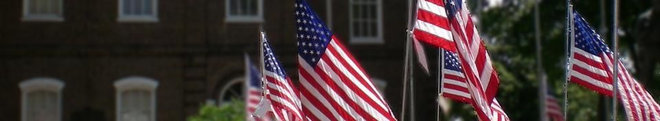 picture of flags in front of the Loudon County Courthouse